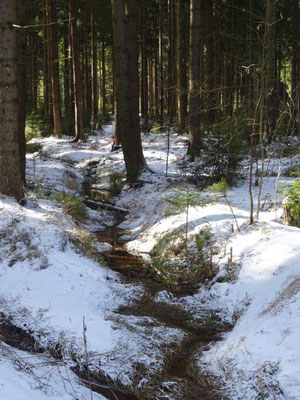 Winterende im Erzgebirge