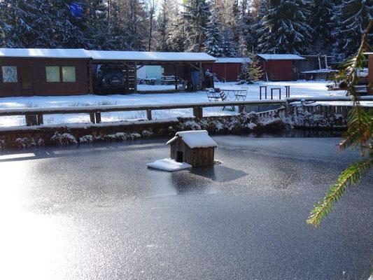 Zugefrorener Teich an der Siebensäure