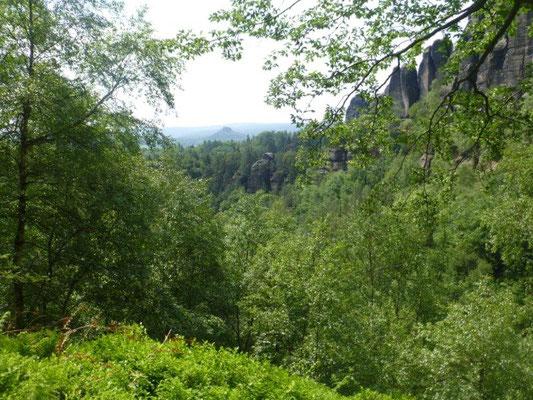 Traumhafte Ausblicke in der Rotkehlchenstiege