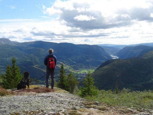 Gipfelglück am Homfjellet