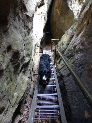 In der Wolfsschlucht auf den Hockstein