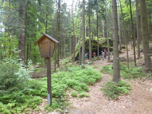 Die Wildbrethöhle im Wald unterhalb des Zschirnsteins
