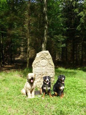 Im Nationalpark Böhmische Schweiz