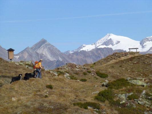 Wanderung zur Lasörlinghütte