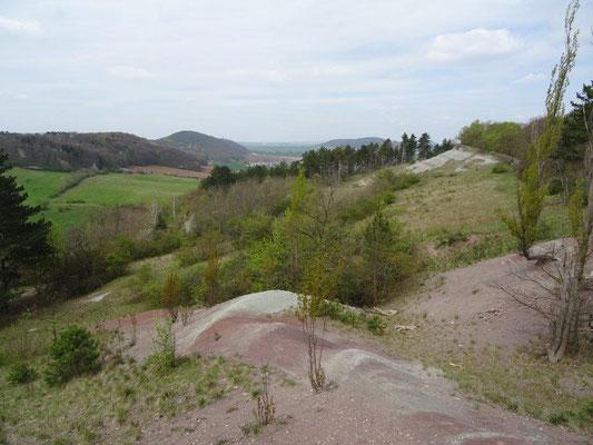 Steppenlandschaft am Burgberg Wachsenburg