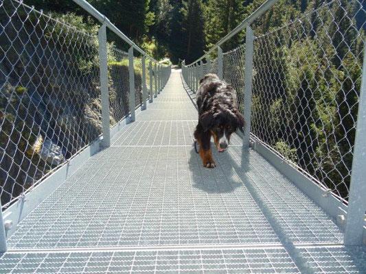 Und spannend gehts weiter - mit einer schwankenden Gitterrost-Hängebrücke