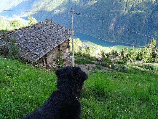 Bauernhöfe in St. Moritz