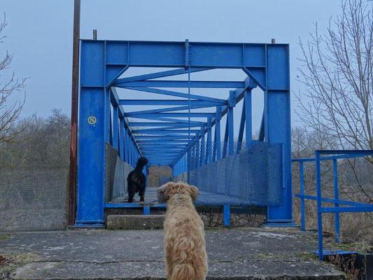 Die heutige Brücke über die Werra war früher Teil der Grenzbefestigung