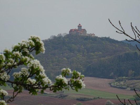 Blick von der Burg Gleichen zur Veste Wachsenburg