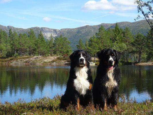 Selma und Vreni am Fingredalstjønni