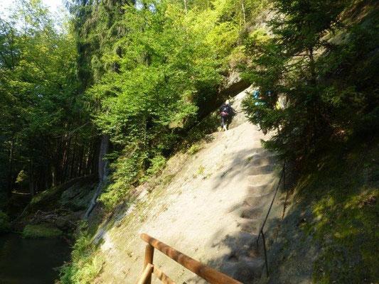 Die in den Stein gehauenen Stufen auf diesem Wegabschnitt erfordern bei den Hunden absolutes Geschick und trittsicherheit.