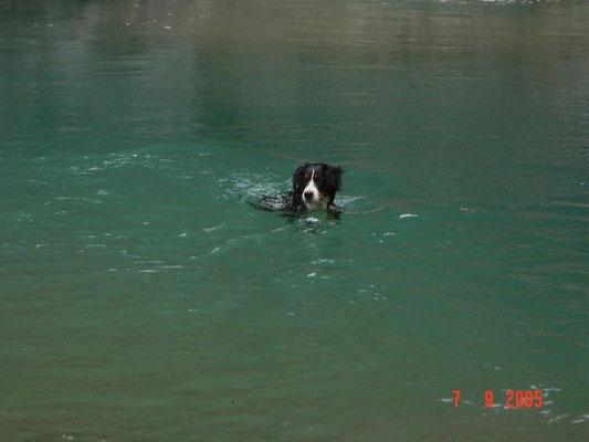 Die kleine Gusti kann schon schwimmen