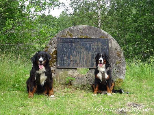 Gedenkstein in Sävenfors