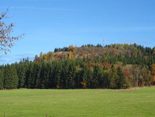 Herbst am Bärenstein