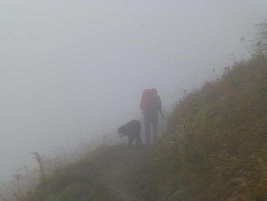 ... und wir machten uns dann auf den Weg durch den Nebel hinauf zur Sajathütte