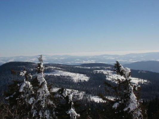 Blick vom Großen Arber über den Bayerischen Wald