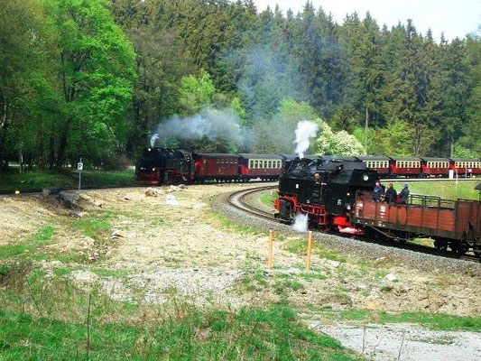 Brockenbahn und Harzquerbahn bei Drei Annen Hohne