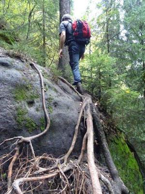 Immer wieder müssen kleinere Kletterstellen überwunden werden