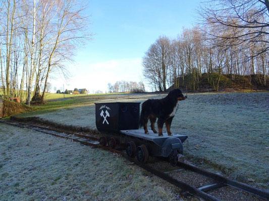 Ein Hunt und ein Hund :-)