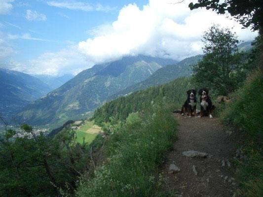 Auf dem Hans-Frieden-Weg zwischen Gasthof Steinegg und der Leiteralm