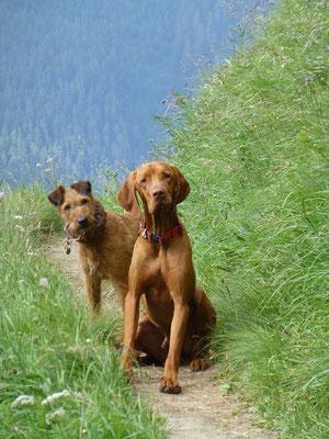 Janos und Lissy