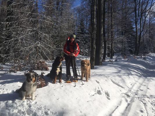 Die Hundis und ich
