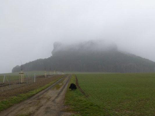 Der nebelumwobene Gipfel des Liliensteins
