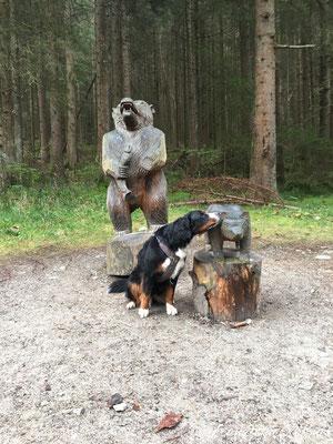Skulpturen auf dem Weg zu den Reinbachfällen