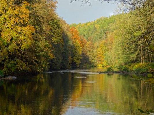 Goldener Herbst im Muldental