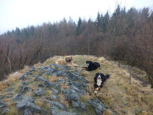 Gipfelrast auf dem Sattelberg