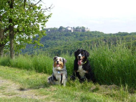 Vreni und Faye vor der Festung Königstein