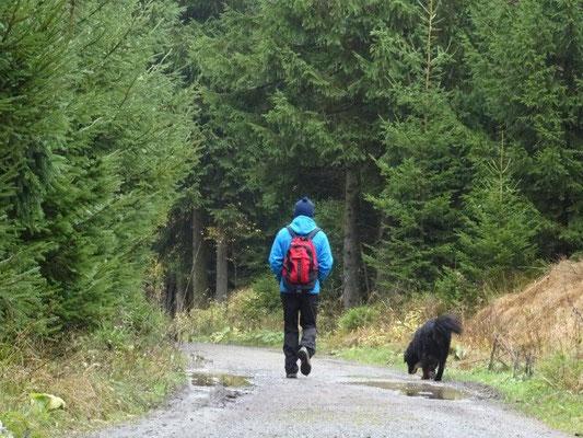 Wandern mit Schwarzwassertal