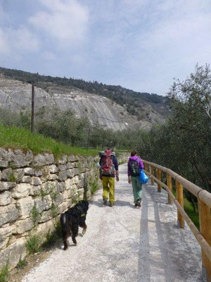 Auf dem Weg zum Kletterfelsen