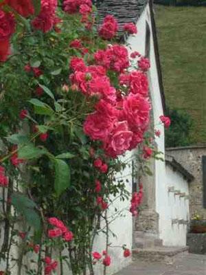 Blumen am Portal der Ramsauer Kirche