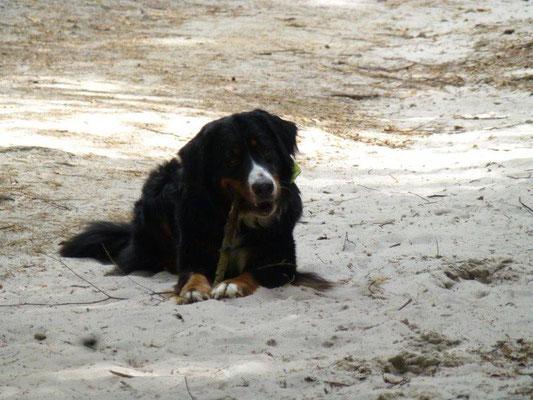Vreni im Sand am Fuße des Rauensteins