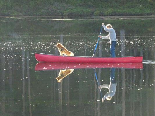 Paddeln auf der Otra - Freizeitvergnügen für Mensch und Hund