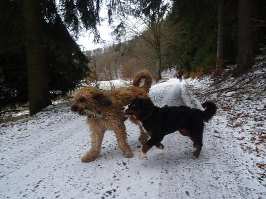 Selma und Nepo beim Spielen