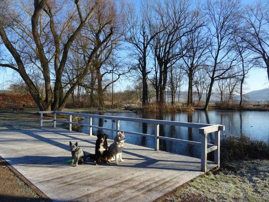 Am Teich vor dem Gutshaus