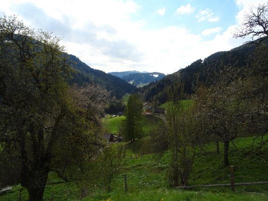 Blick taleinwärts Richtung Krakaudorf