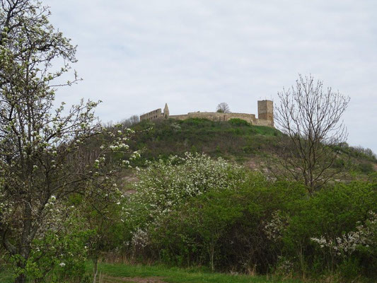 Die Burg Gleichen