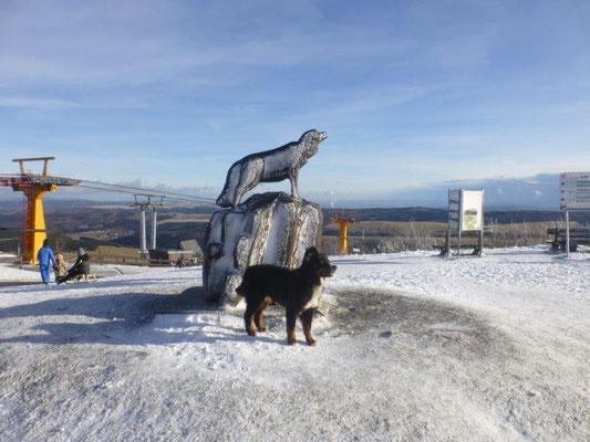 Auf dem Fichtelberg-Plateau