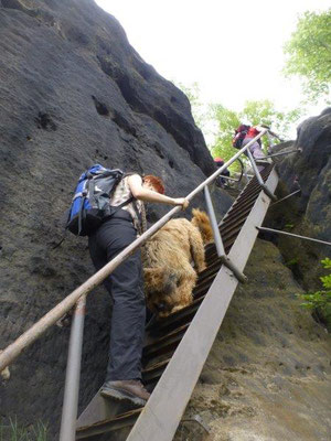 Der Abstieg erforderte bei Mensch und Hund absolute Konzentration