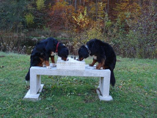 Selma und Vreni beim Schachspiel