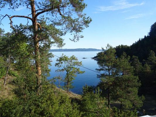 Kleiner Rundgang am Løvøya Campingplatz in Horten