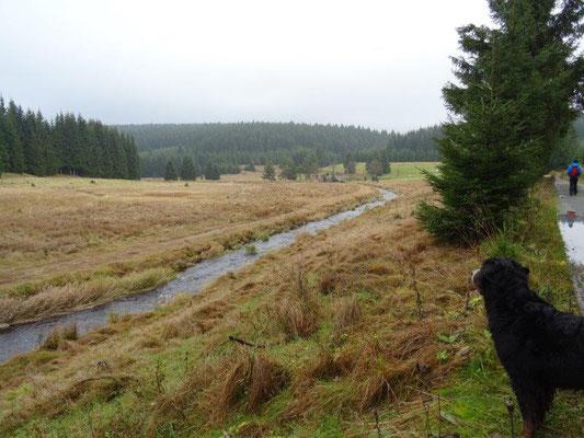 Vreni genießt den Ausblick aufs Tal