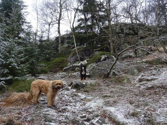 Aufstieg zum Hohen Schneeberg