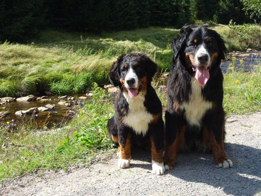 Selma und Vreni am Schwarzwasser