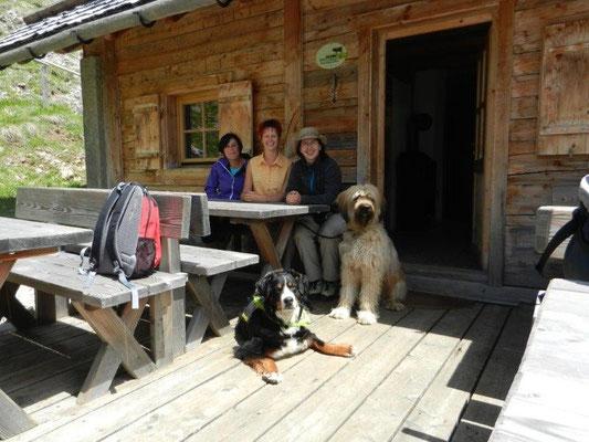"""In der Almhütte der Medalgesalm verbrachte der Journalist Jürgen König gemeinsam mit seinem Hirtenhund Schnaps ein ganzes Jahr. Das Buch """"Medalges"""", das er darüber schrieb, ist sehr lesenswert!"""