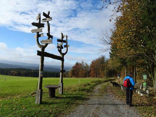 Wanderweg am Fuße des Bärensteines