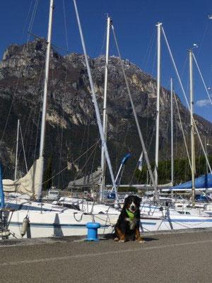 Gusti am Hafen von Riva del Garda